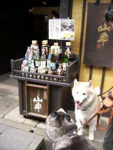 2010 8月高山・乗鞍 035