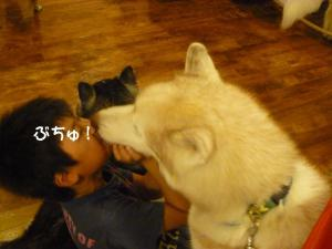 2010 8月高山・乗鞍 546