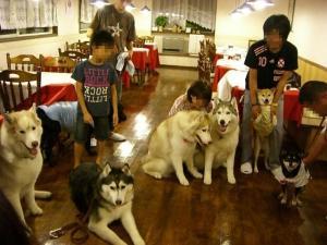2010 8月高山・乗鞍 156