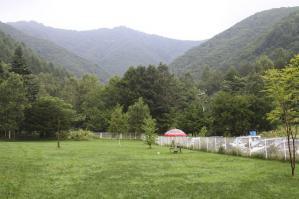 2010 8月高山・乗鞍 264