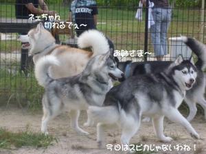 2010 9月愛ハス会 008
