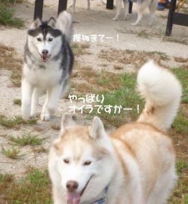 2010 9月愛ハス会 017