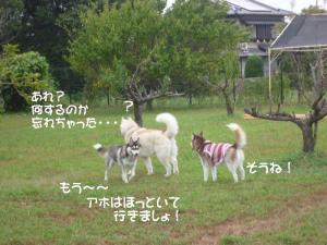 2010 9月愛ハス会 023