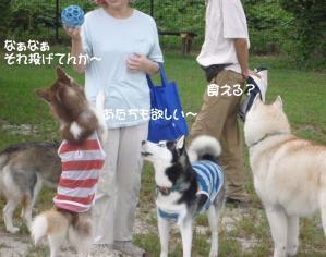 2010 9月愛ハス会 037