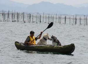 2010 10月琵琶湖ラン 050
