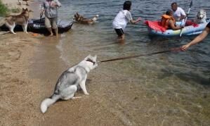 2010 10月琵琶湖ラン 053