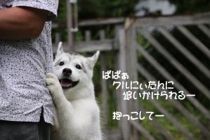 2010 10月清里・蓼科 301