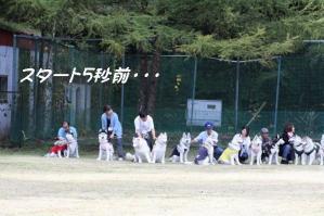 2010 HUS☆HUG 2010 009