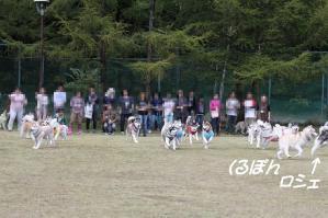 2010 HUS☆HUG 2010 016a