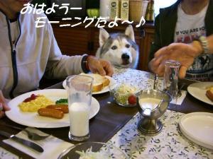 2010 HUS☆HUG 2010 706