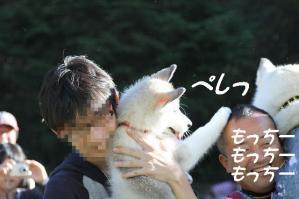 2010 HUS☆HUG 2010 429 a