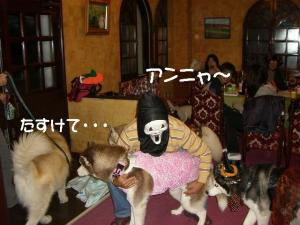 2010 HUS☆HUG 2010 823