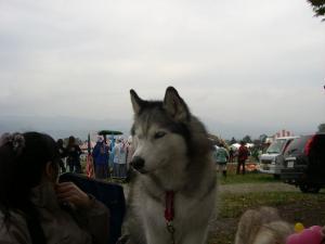 2010 10月カンテ祭 170