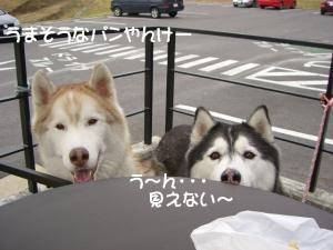 2010 11月愛ハス会 002a