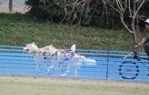 2010 11月ギグレースin京都 698