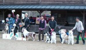 2010 11月ギグレースin京都 118