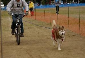 2010 11月ギグレースin京都 029
