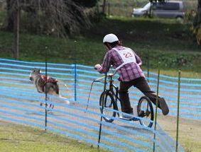 2010 11月ギグレースin京都 488