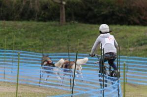 2010 11月ギグレースin京都 790
