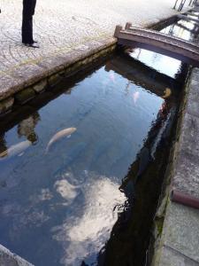 2010 11月女子会 高山旅行 012