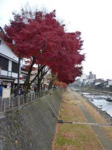 2010 11月女子会 高山旅行 072