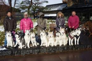 2011 1月カーロ菅平 010