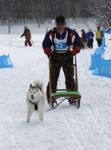 2011 きぬがわ犬橇大会 431