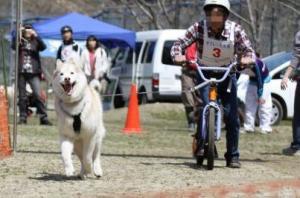 2011 4月ギグレース美山 631a
