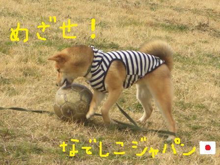 ichi7-g.jpg