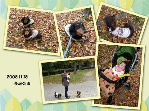 200811秋01blog01