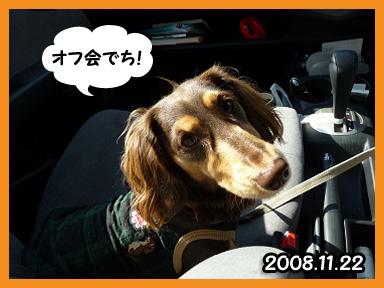 2008 11 22 オフ会デビュー2 blog01のコピー