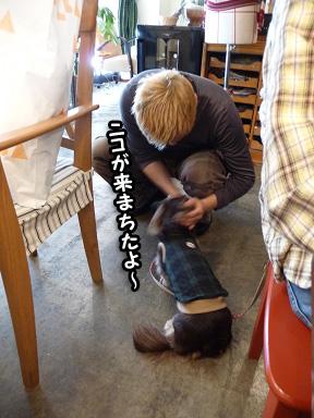 2008 11 22 オフ会デビュー2 blog07のコピー