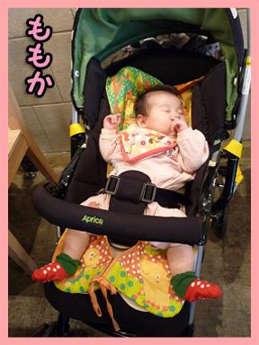 2008 11 22 オフ会デビュー2 blog10のコピー