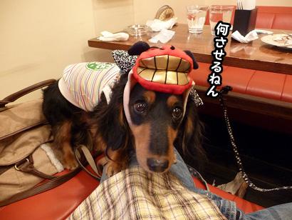 2008 11 30 お誕生会 blog14のコピー