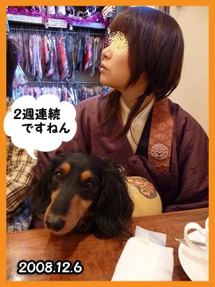 2008 12 06 百香寝返り blog05のコピー