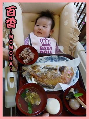 2008 12 11 百香お食いぞめ blog02のコピー