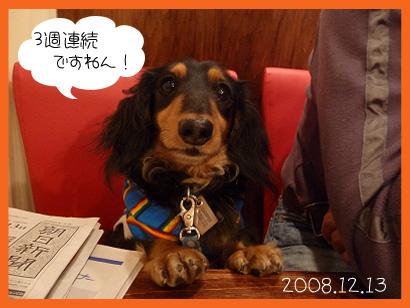 2008 12 13 休日 blog02のコピー