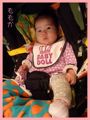 2008 12 13 休日 blog04のコピー