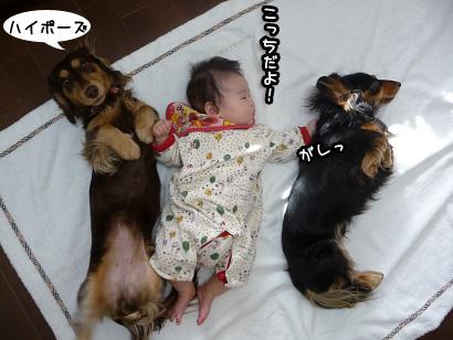 2008 12 20 スリーショット2 blog03のコピー