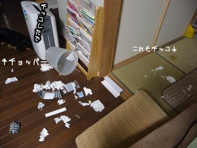 2009 01 11 小田さん結婚式5 blog01のコピー