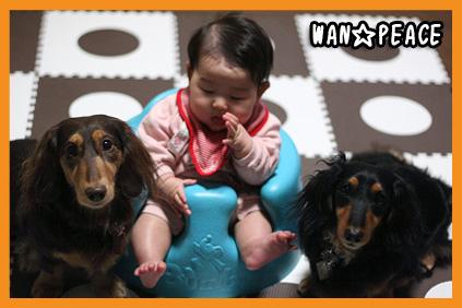 2009 01 19 momo blog02のコピー