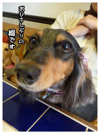 2009 02 08 オフ会 blog06のコピー
