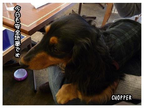 2009 02 08 オフ会 blog02のコピー