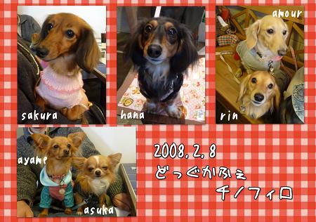 20090208オフ会blog02
