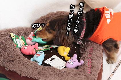 2009 02 18 ホッピーくん blog01のコピー