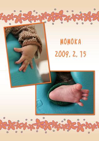 20090220モモblog01