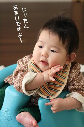 2009 02 14 ニコ2歳3 blog02のコピー