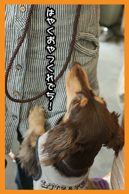 2009 06 14 wanbanaオフ会 blog02のコピー