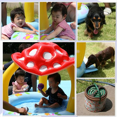 2009夏 水遊びblog01