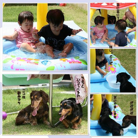 2009夏水遊びblog03
